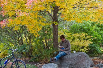 Finding a cozy spot to study on a picture-perfect fall day.