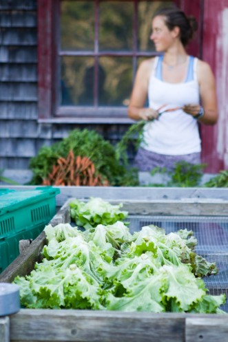 Washing lettuce and carrots at COA's Beech Hill Farm.