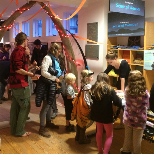 Children learning about the spooky side of nature at the Dorr Museum