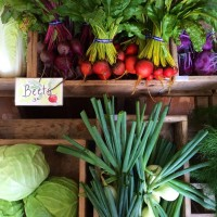 Beech Hill Farm stand