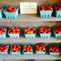 Beech Hill Farm tomatoes