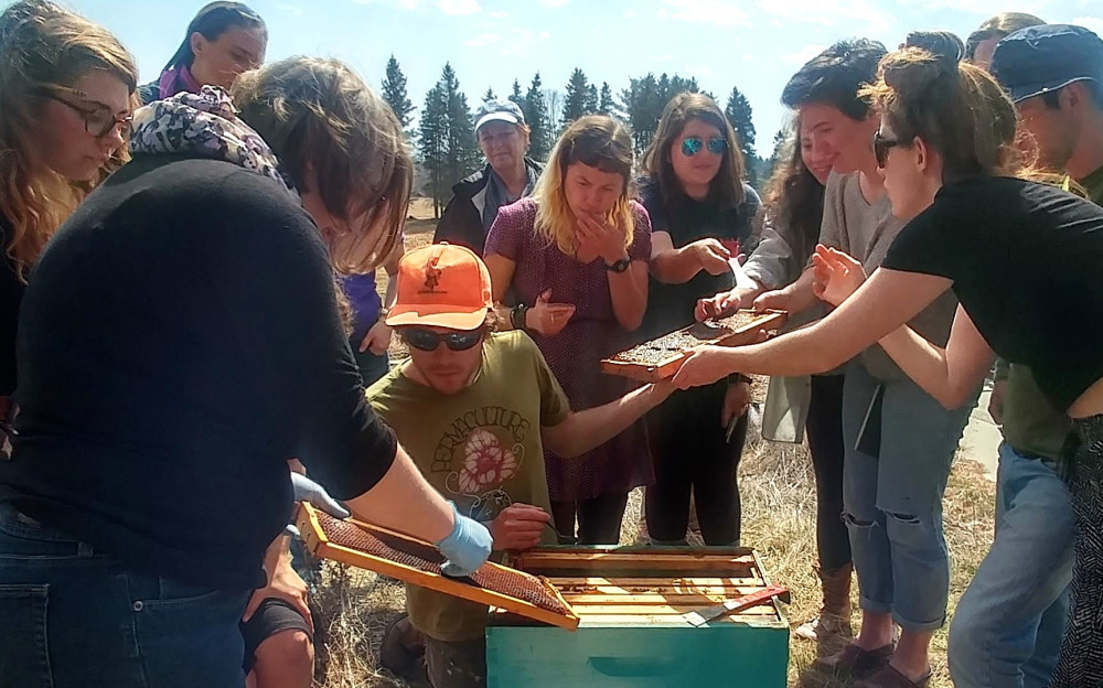 "Experiential education is a core part of the COA curriculum. Students in the <a href=""/live/profiles/3220-bees-and-society"">Bees and Society</a> course sample fresh honey from their hives at <a href=""/farms/peggy-rockefeller-farms/"">COA Peggy Rockefeller Farms</a>, above."