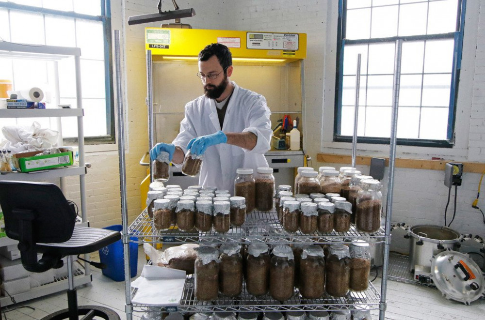 Head mycologist for North Spore John Carver creates grain spawn in the business' new lab space.