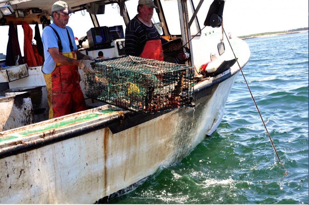 "The history of lobstering and fishing in coastal Maine communities is explored by Professor Todd Little-Siebold's <a href=""/live/profiles/3285-mapping-the-oceans-stories"">Mapping the Ocean's Stories</a> class, taught in conjunction with Maine Sea Grant and the Island Institute."