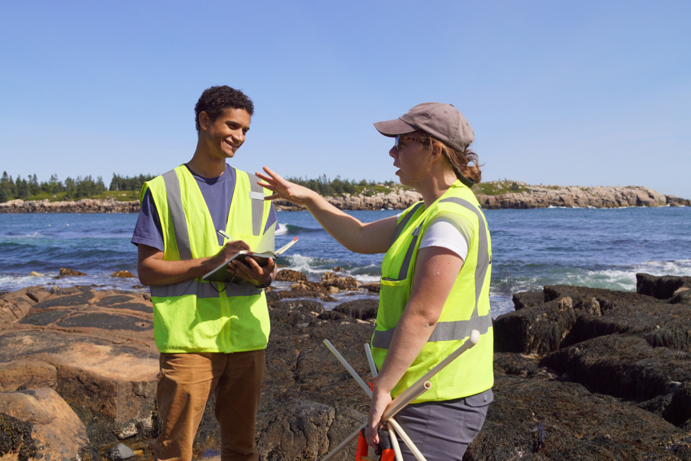 Noah Rosenberg '18 helps get the Schoodic Institute story out while working as a COA Acadia Scholar intern in the Institute's communications office. He is seen here on the rocky shore of Schoodic Point in Acadia National Park.