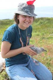 Audra McTague '19 banding birds on Great Duck Island.