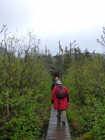 "Hiking in maritime Canada as part of the course, ""Marvelous, Terrible Place: Human Ecology of Newfoundland."""
