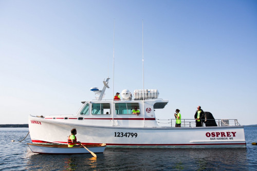 "<a href=""/boats/osprey/"" target=""_blank"" rel=""noopener noreferrer"">Osprey</a> is College of the Atlantic's fully equipped marine research vessel."