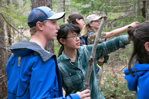 Students learning about ecology field work in Acadia National Park is a common occurrence in man...