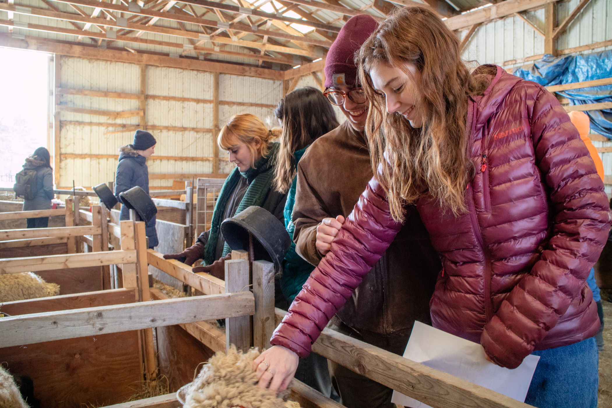 COA students spend time with the sheep at Peggy Rockefeller Farms.