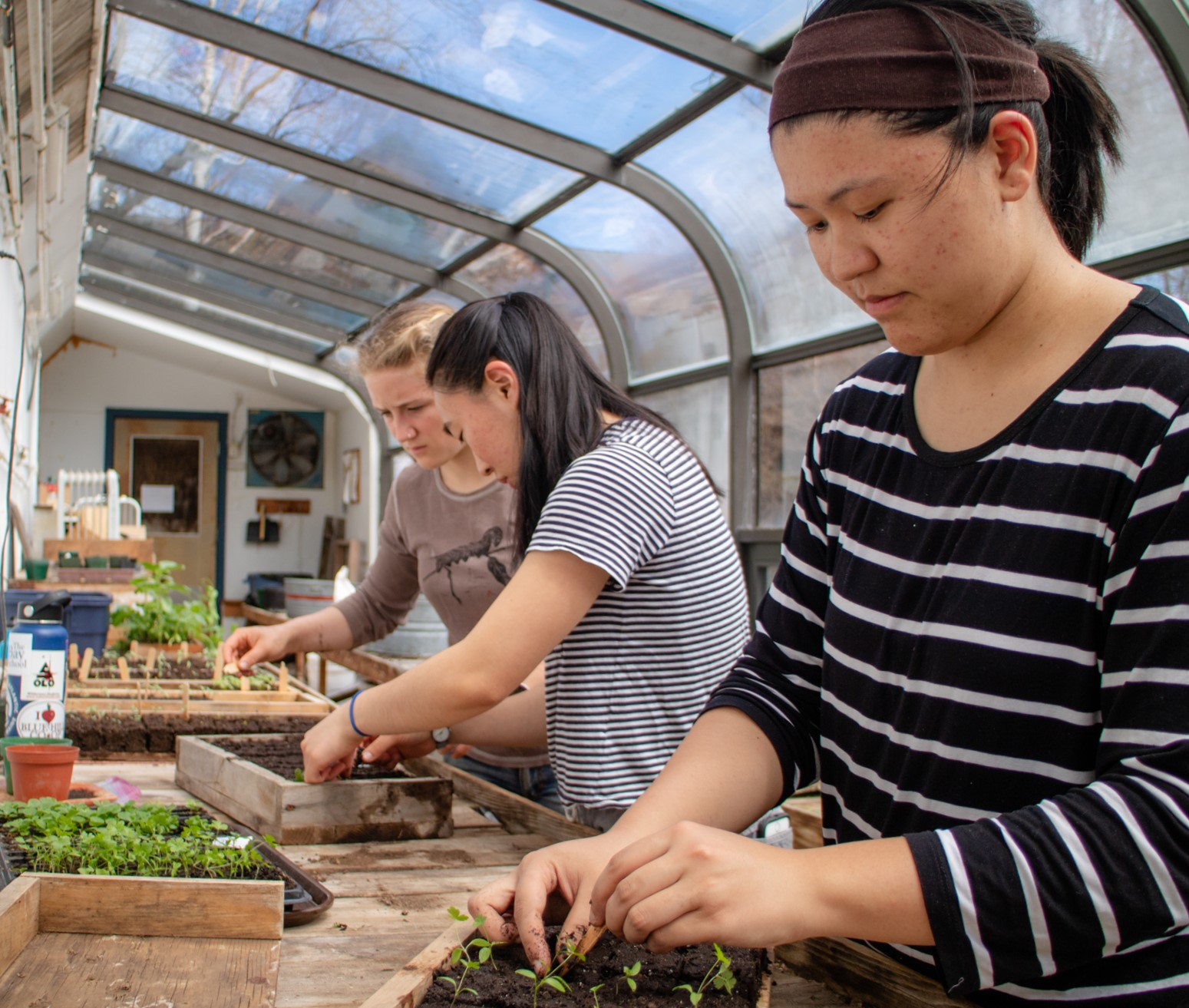 The COA Amos Eno Greenhouse, along with the college's two organic farms, provide students wit...