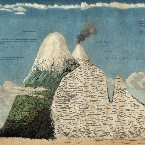 Humboldt's climb of Chimborazo in the Andes Mountains in present-day Ecuador resulted in this map of vegetation change i...