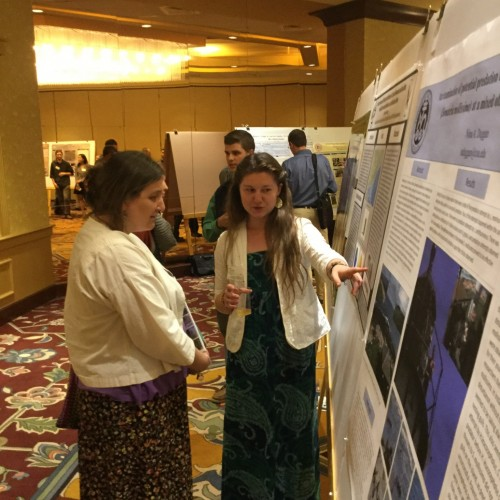 Audra McTague '19 explains her research at the annual Northeast Natural History Conference.