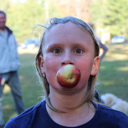 Spend your afternoon bobbing for apples, tasting cider, enjoying a campfire, and eating delicious food at The Community Sc...