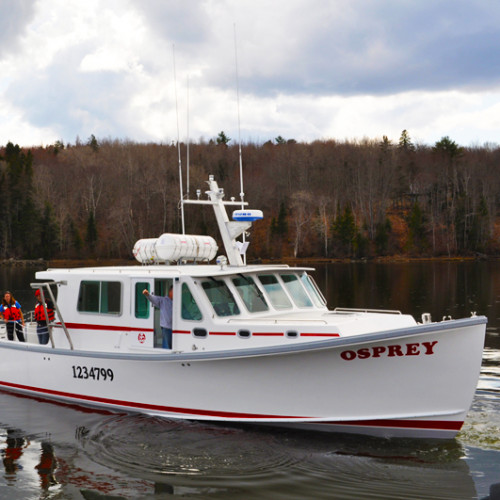 The MV Osprey sets sail in Surry, ME.
