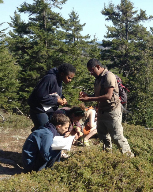 "College of the Atlantic students in the ""<a href=""https://www.coa.edu/live/profiles/1640-trees-and-shrubs-of-mount-desert-island"">Trees and Shrubs of Mount Desert Island</a>"" course examine the flora of nearby Acadia National Park."