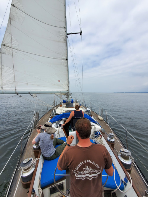 River Gull, one of 15 Seguin 44 sailboats built in Thomaston, Maine, has traveled around the worl...