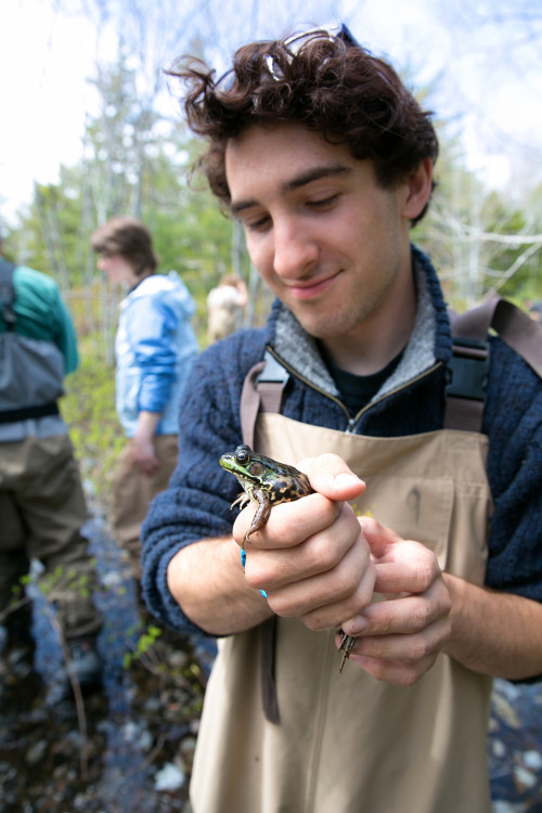 Field research opportunities are abundant at College of the Atlantic. From trips into the rainforests of Costa Rica, to checking out frogs just next door in Acadia National Park, students get extensive hands on experience working outside in their natural environment.