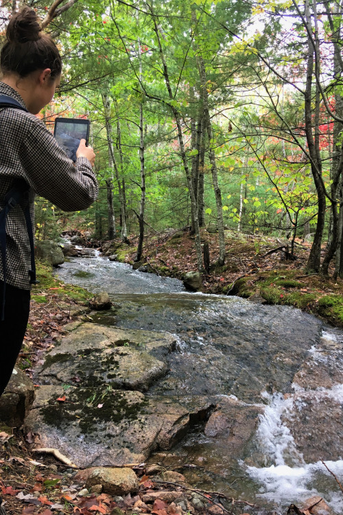 Sarah Gibson '20 working in Acadia National Park.