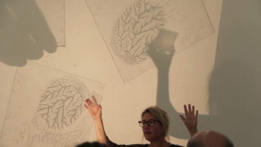Malene Lundén of the Energy Academy showing students fractal patterns. Sept. 26.