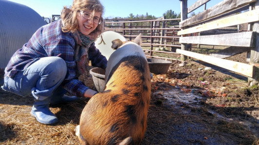 Becca Harvey '16 poses with one of the pigs she raised at Peggy Rockefeller Farm.