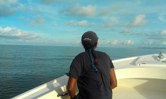 Roshni Mangar '16 surveying for dolphins.