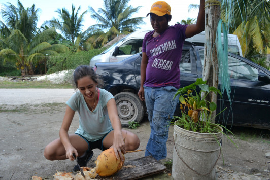 Megan picking a coconut with the help of Don Peligro's son.