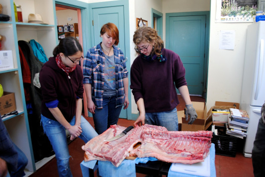 Becca Harvey '16 explains butchering techniques to friends at her workshop.