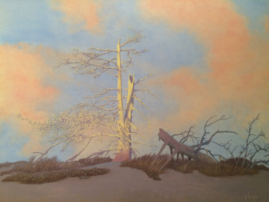 Ghost Tree Relic of an Earlier Shoreline - B. Gary Hoyle