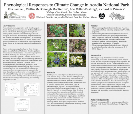 Phenological Responses to Climate Change Research by Ella Samuel '16