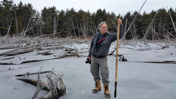 College of the Atlantic biology professor Steve Ressel leads the way as COA's Winter Ecology cou...