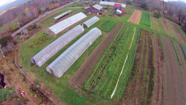 Beech Hill Farm from above.