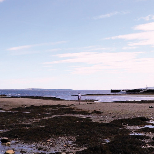 Mike Bills walks along the Searsport, Maine shore, not far from his home.