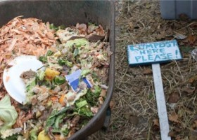 Compost and Community: A Case Study