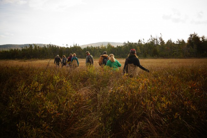 Ecology Natural History class takes to the bog.