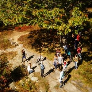 overhead shot of students in the park
