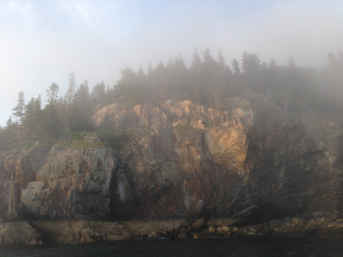 Porcupine island cliffs in the fog