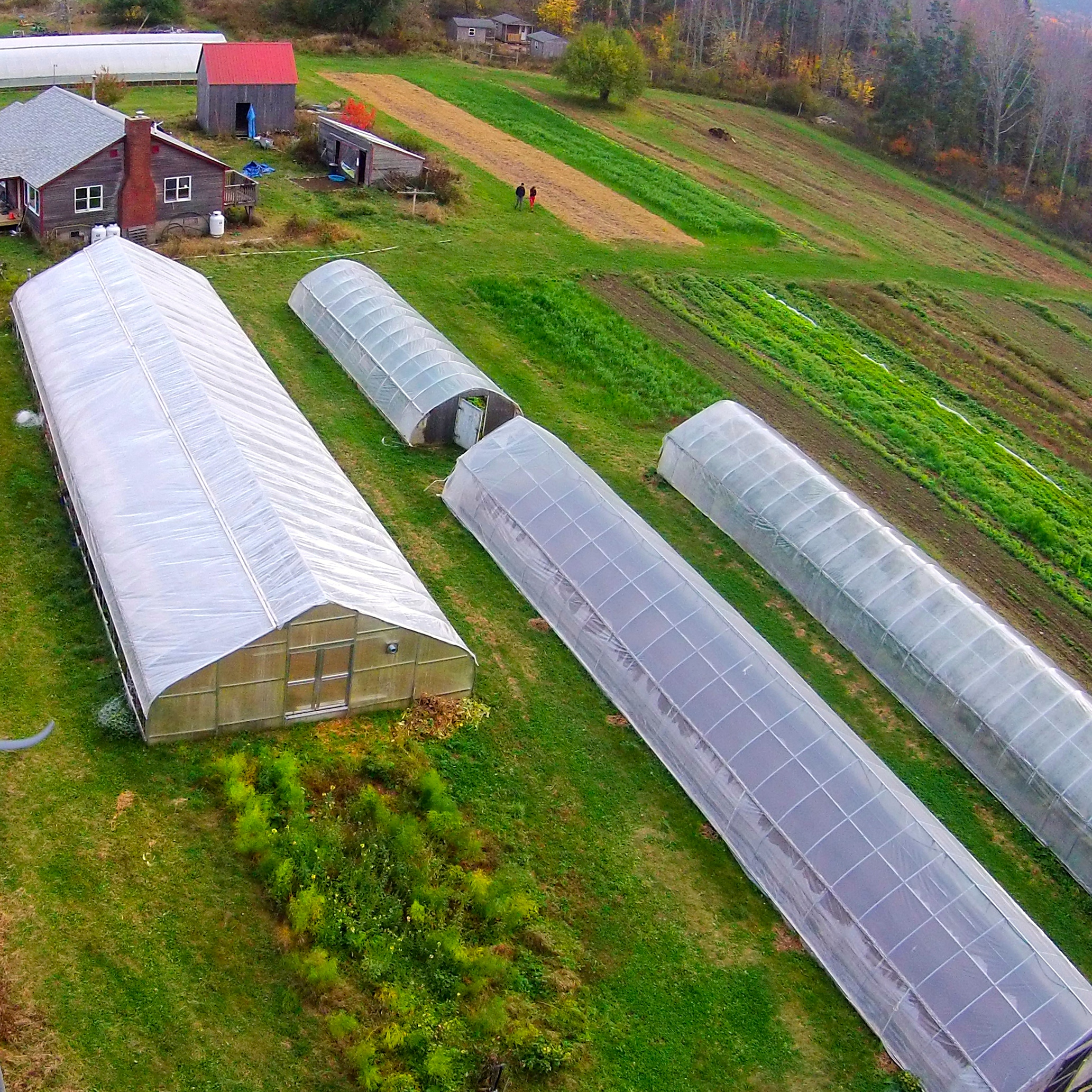 Exciting to see @collegeoftheatlantic @beechhillfarm_coa in the #1 spot on Best Value Schools list of Top College Farms!  #best #collegefarm #smallfarm #organic #farm #top #collegeoftheatlantic #experiential #selfdirectedlearning #lifechanging #worldchanging