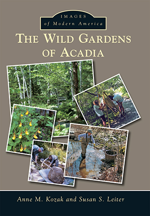 The Wild Gardens of Acadia, by writing program director Anne M. Kozak and Susan S. Leiter, uses a...