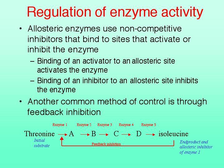 bio enzyme activity What is the relationship between an enzyme and a substrate what factors can affect enzyme activity summarize the procedure in your lab book so that you can follow along.