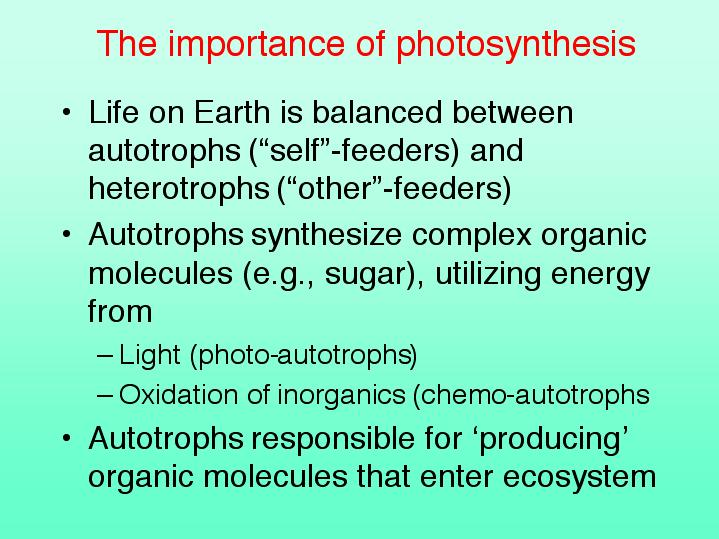 is photosythesis Learn how plants make food using photosynthesis and how leaves adapt to do this with bbc bitesize ks3 science.